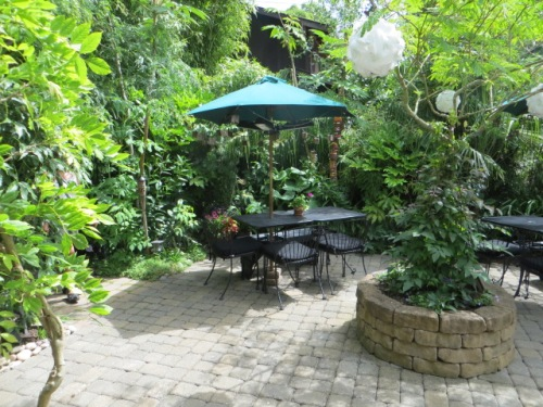 an entertaining patio, viewed from the snacks table