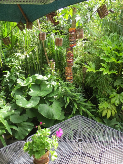 cool plants in every nook