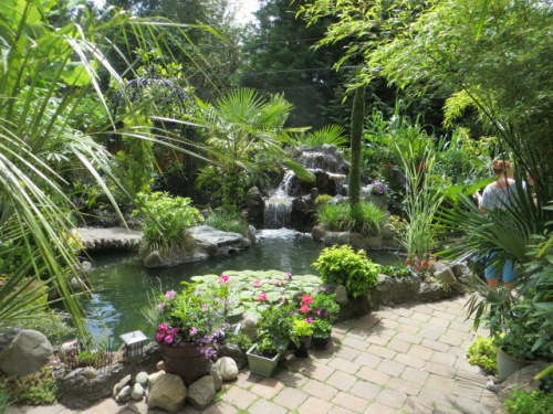 and a waterfall pond!