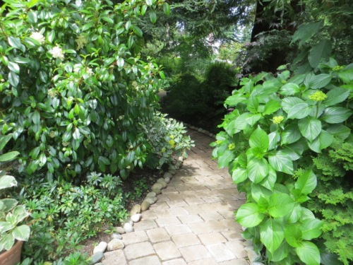 Instead of turning, I walk straight ahead into a shade garden.