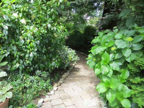 Instead of turning, I walk straight ahead into a shade garden.