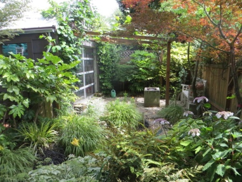 looking from the small shed to the other back corner of the garden