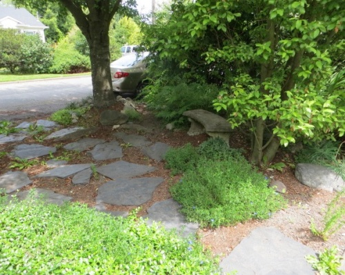 We leave the previous garden and walk past just two or three houses, admiring the extra wide parking strip.