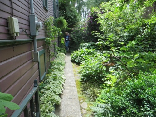 narrow side yard
