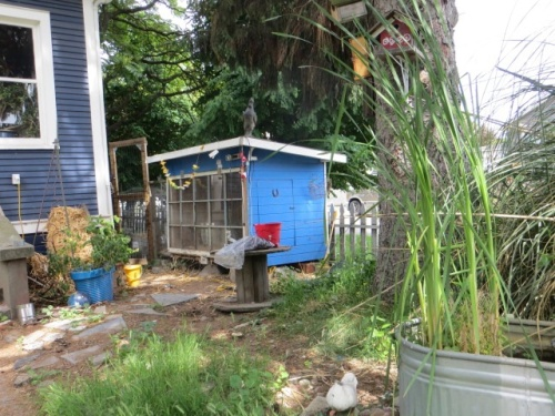 a coop for city chickens