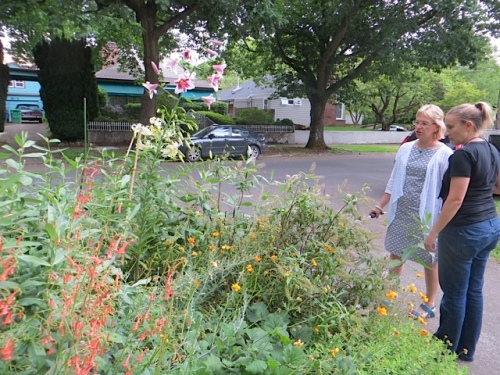 Joanne, whose garden is mostly shady, is using it to grow sunny plants!