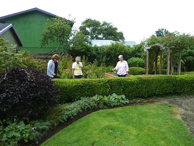 tour guests in the kitchen garden