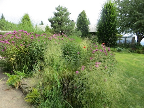 The billowing meadowy look prevails in the gardens.