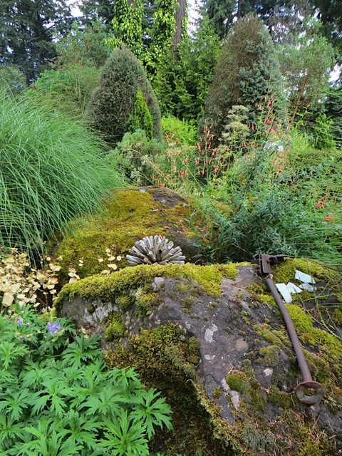I miss the enormous mossy boulder in my old garden; it was as bigger than a lorry.