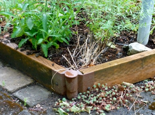 "Allan's photo: ""kit for raised garden lumber detail"""