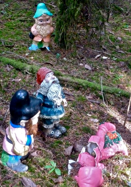 disturbing!  No wonder gnomes can have a bad name.