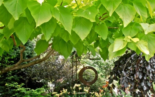 "Allan's photo and caption: ""A subtle sculpture under a glowing tree.""  See, he could write this blog."