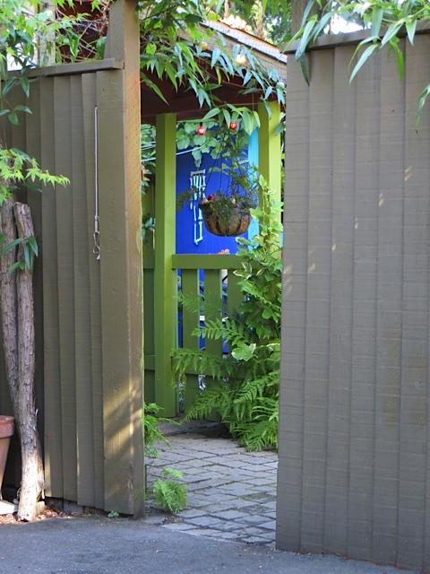 a splash of colour as we peek into the back garden