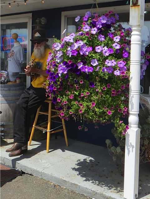 Peter in front of the Don Nisbett Art Gallery with flowers by Nancy of the Basket Case Greenhouse