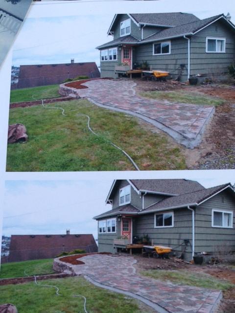before photos of a garden