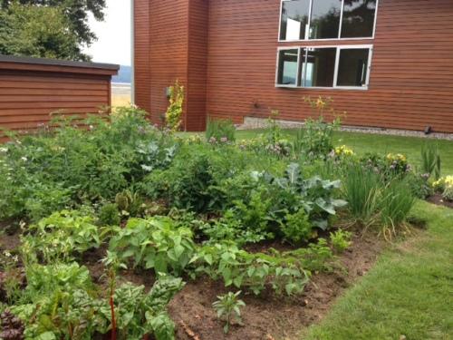 photo by Nancy Allen, who loves kitchen garden
