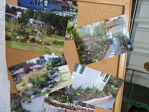 photos of making the garden