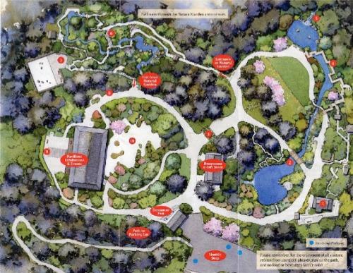 Portland-Japanese-Garden-Map
