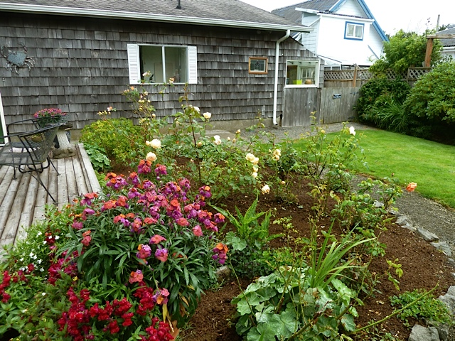 Patti's rose garden to the east of her deck.