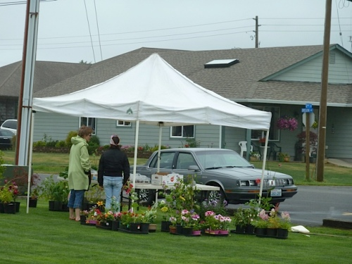 As we worked, three vendors set up despite the rain.