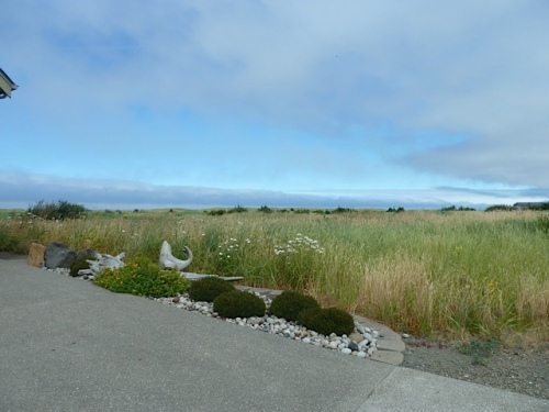 looking northwest over the beach grass
