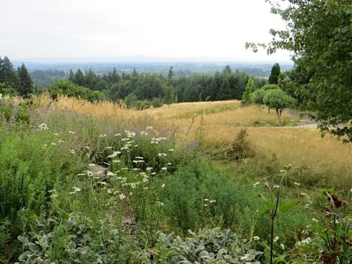 looking over the grassy meadows below the house