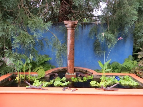 The other side of this blue wall is the green wall of the shade garden.