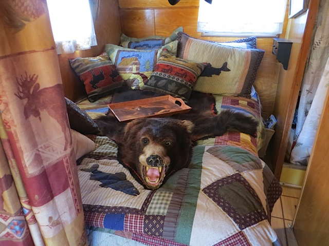 """The owner warned me """"Don't be scared, there's a bear on the bed!"""""""
