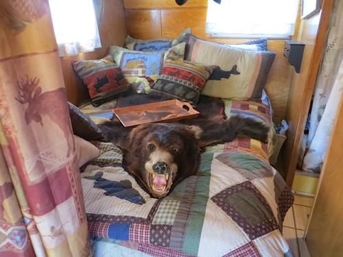 "The owner warned me ""Don't be scared, there's a bear on the bed!"""