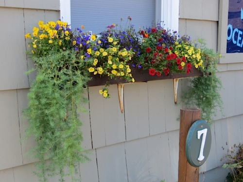 the windowboxes are pretty much self-cleaning