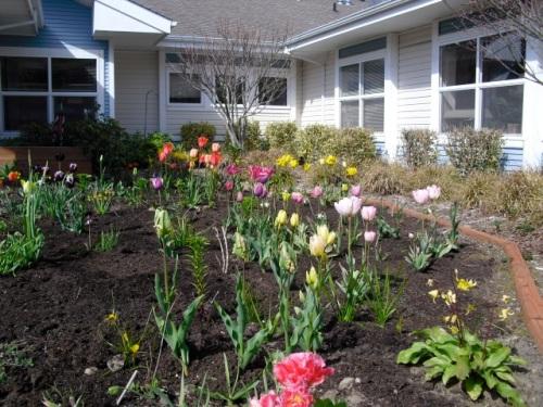 NE quadrant spring 2010