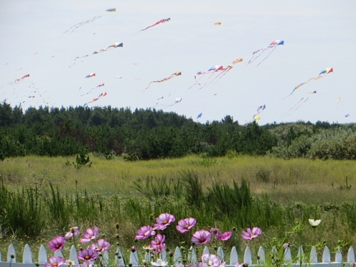 Cosmos and Kites