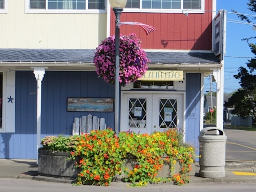 fun:  the planter in front of Home at the Beach.  If nasturtiums swallowed all the planters like this, I suppose I would have much less grooming to do.