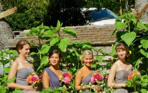 the bridesmaids (Allan's photo)