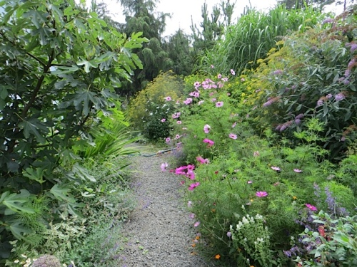 the path in Marilyn's garden