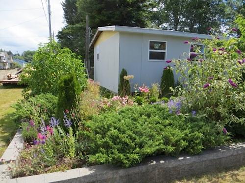 The northwest corner of Mike's garden
