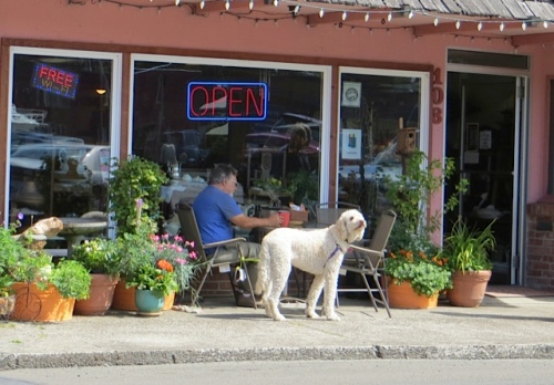 Olde Towne again, customers surrounded by Luanne's container garden