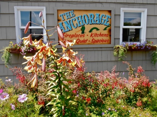 Look how perfectly the lily matches the Anchorage sign!