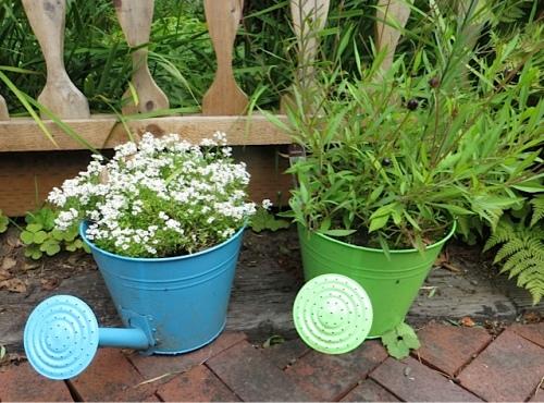 a couple of flower pot planters
