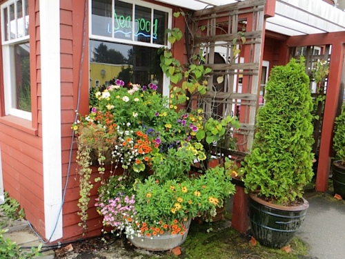 windowboxes and barrels on the north side are by Nancy Aust of the Basket Case Greenhouse.