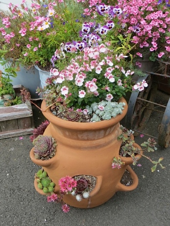 Diane's strawberry jar is the star of the containers.