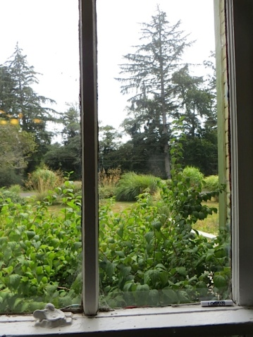 the view of the garden from manager Christl's window
