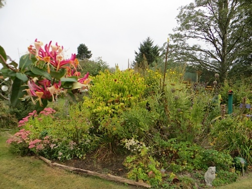 east garden bed; I must remember to keep watering the geranium I recently tranplanted along the edge.