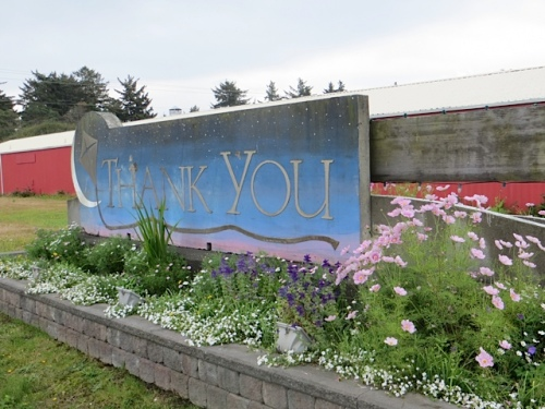The back of the sign is edged with white bacopa.