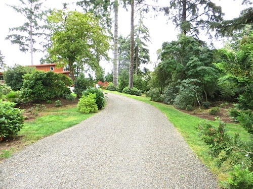 As the rain became a bit harder, we strolled on up the driveway.