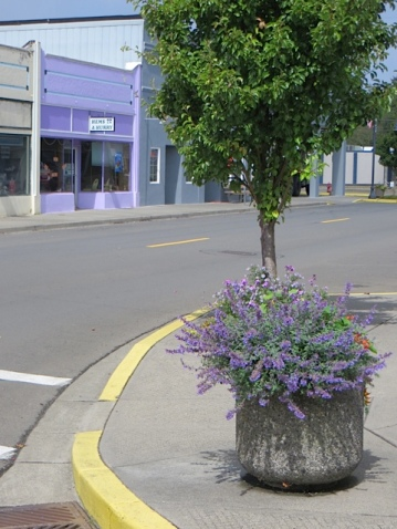 on the way to Olde Towne, a planter and building do a colour echo