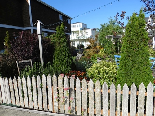 picket fence at west end of garden, from the outside