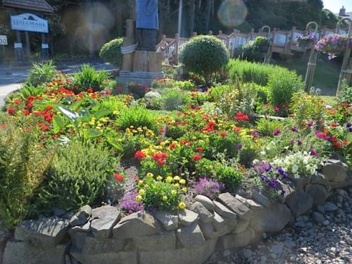 streetside garden