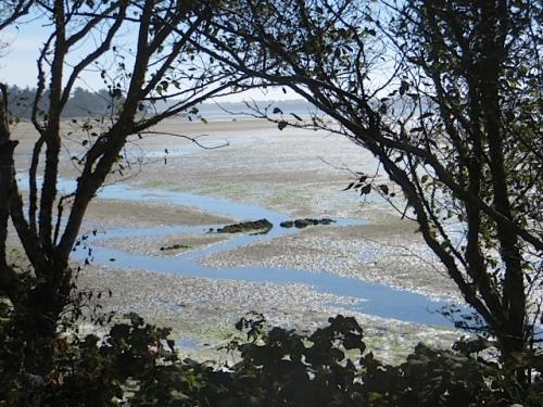 low, low tide