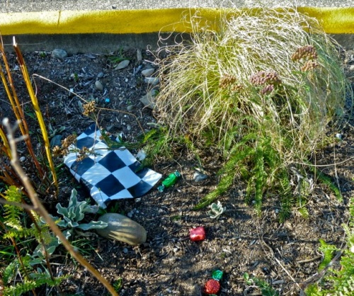 Allan's photo: leftovers in the gardens from Slow Drag at the Port